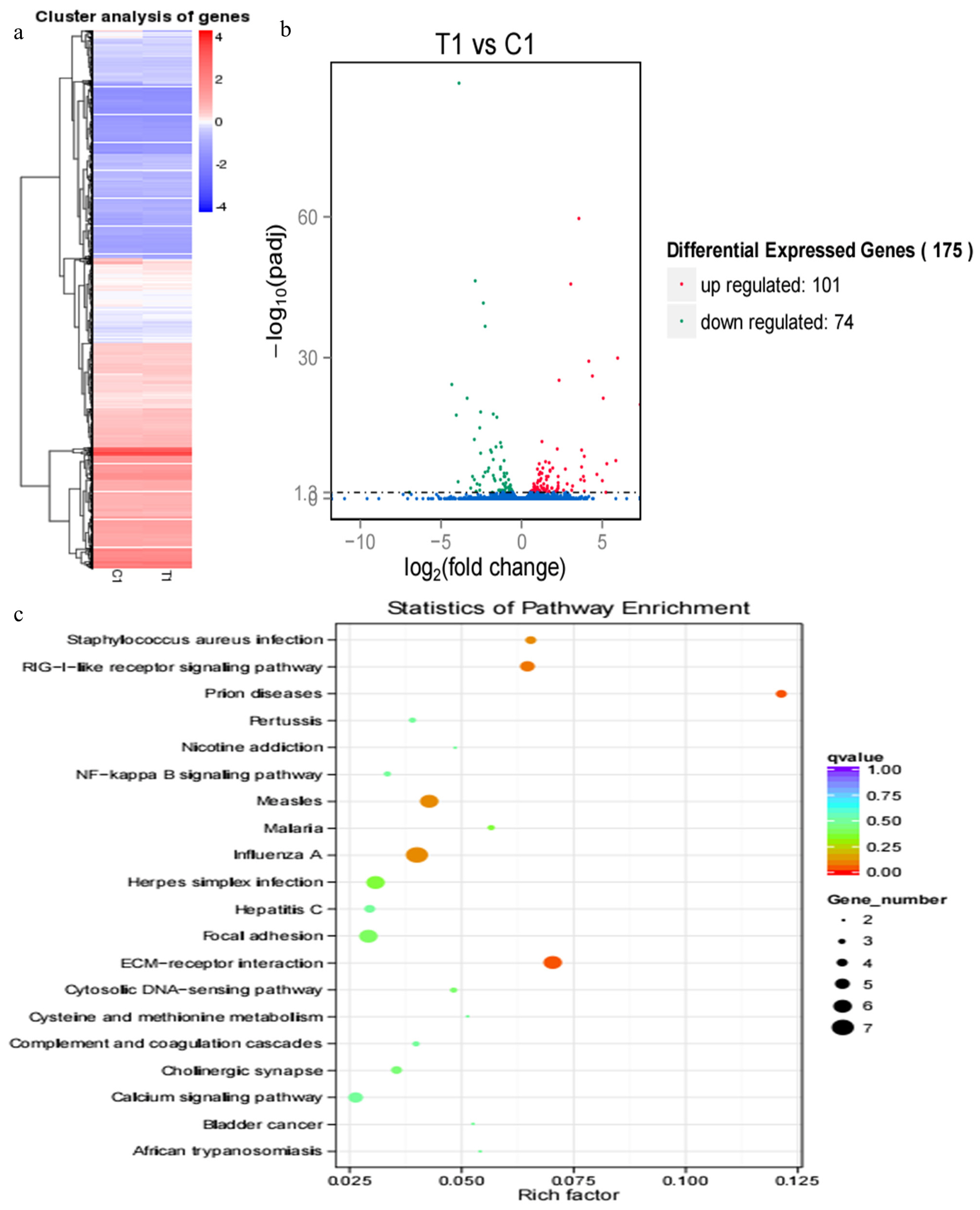 The study of blood transcriptome profiles in Holstein cows with