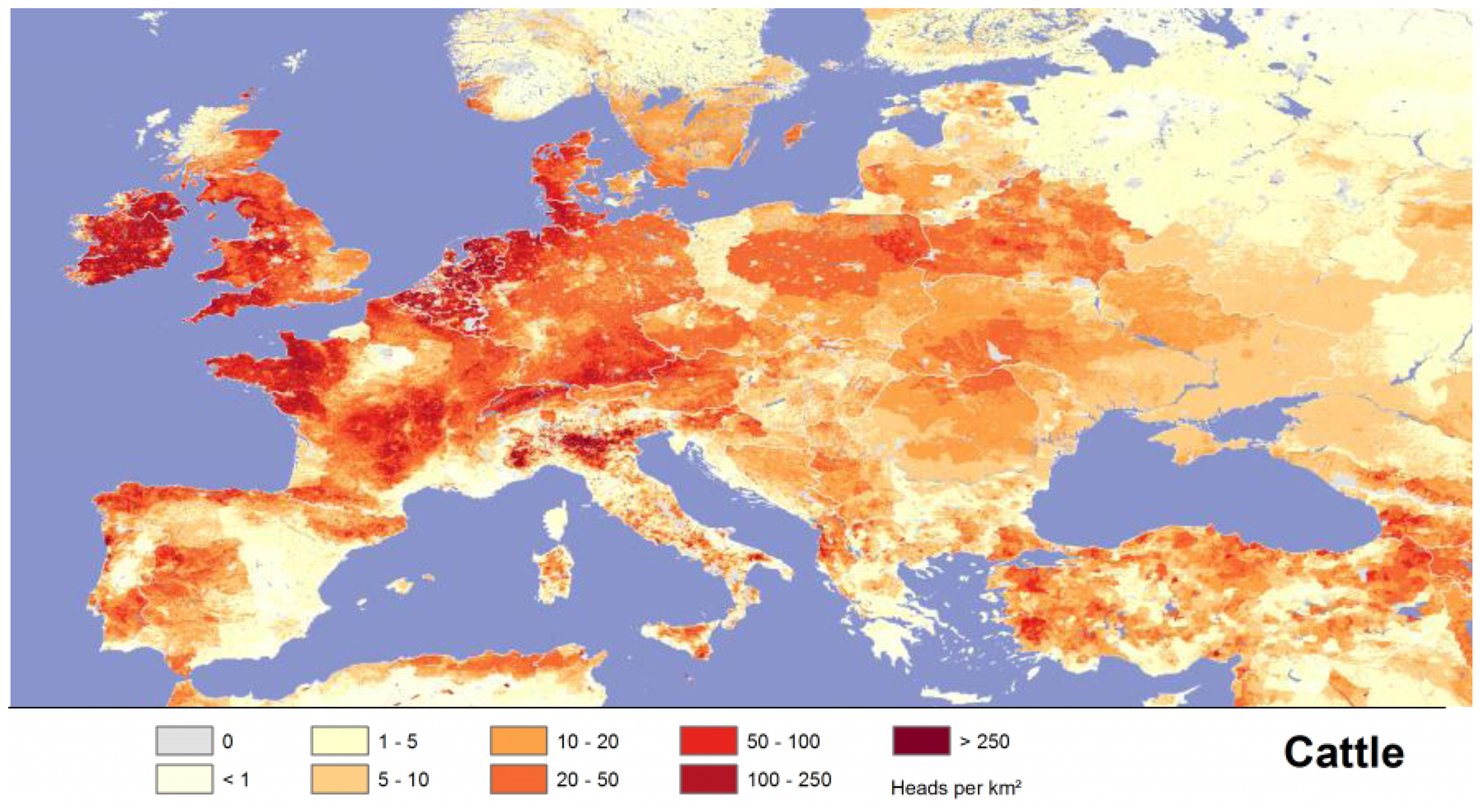 Current situation and future prospects for beef production in Europe